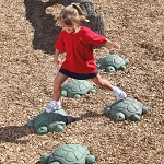 Turtle Steps (Set of 5)